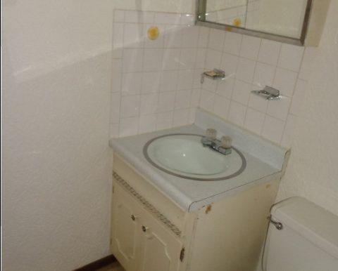 12-Downstairs Bath